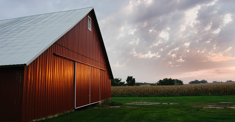 Rodale Institute moves Organic Field Day online - New Hope Network