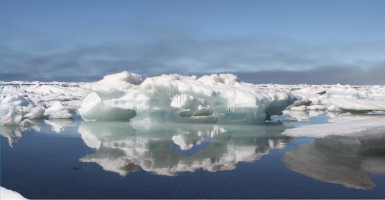 Arctic ice is melting because of global warming
