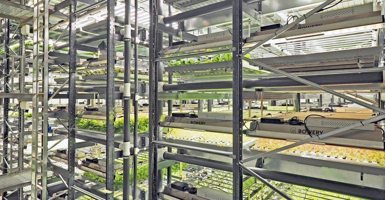 bowery farming grow room