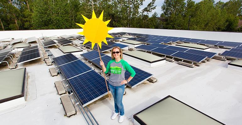 Melissa CFC Solar Panel.