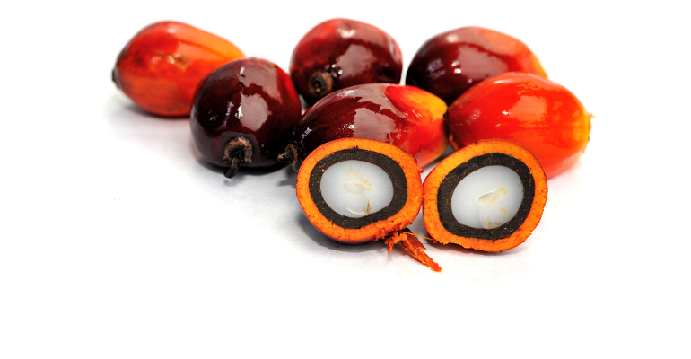 EW19-palm-oil-getty.png