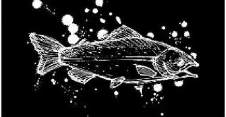 Marketing not rocket science: Stop GE Salmon