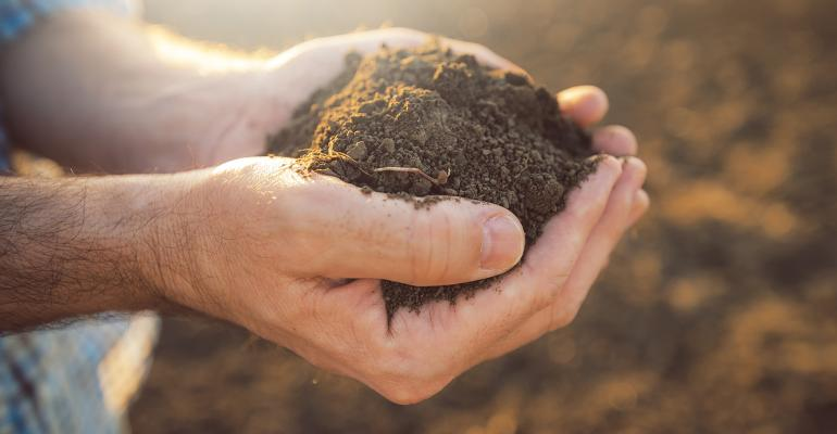 How brands can be active players in restoring soil health and climate change mitigation