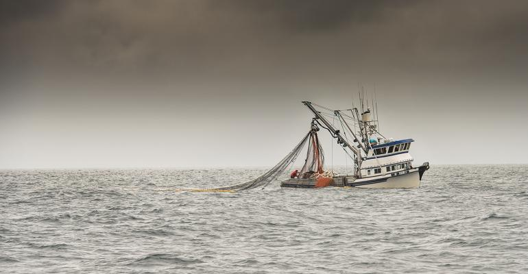 fishing trawler in alaska fresh frozen