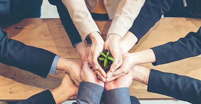 corporate-green.jpg