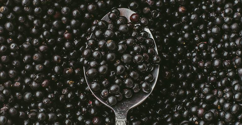 elderberry-spoon.jpg