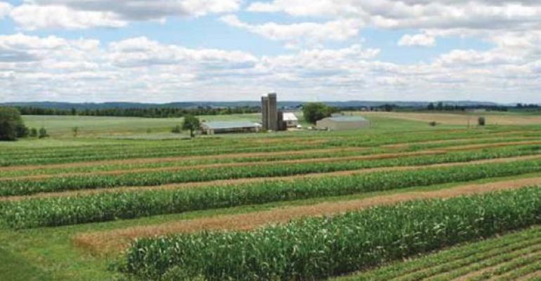 healthy soil key to reversing climate change