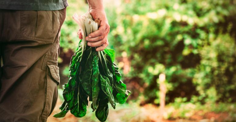 sustainable farm programs