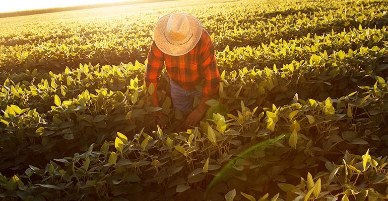 farmworker.jpg
