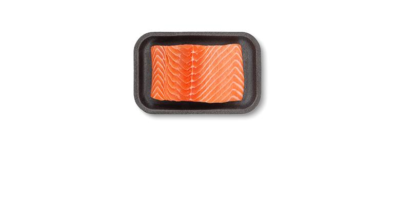 fish-salmon.png