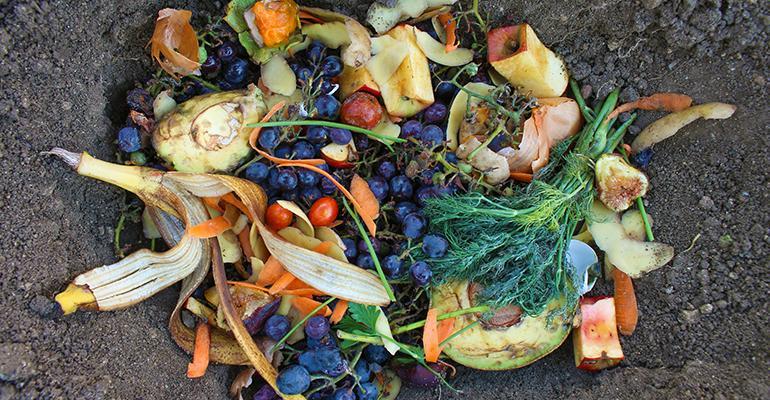 food-waste-farms.jpg