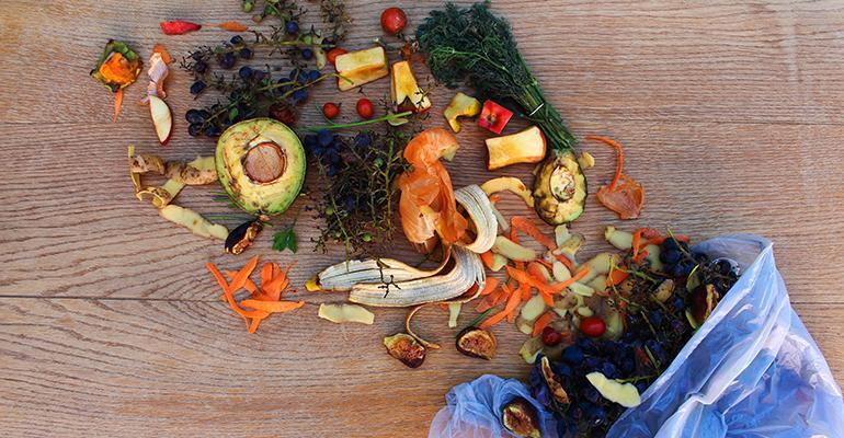 foodwastebag.jpg