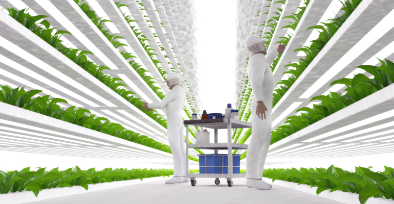 Futuristic vertical farm