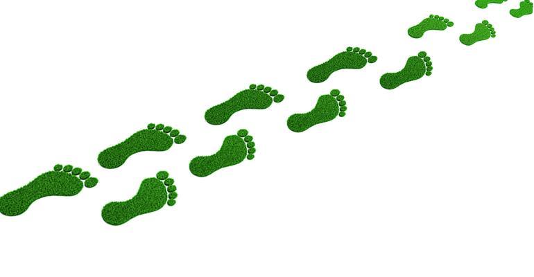 green-footprints-Getty-promo.jpg