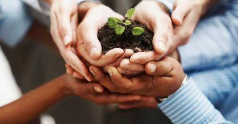 Hands holding dirt and small plant