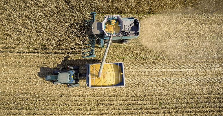 harvesting-getty-promo.jpg