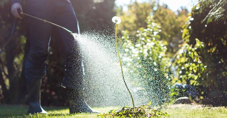 herbicide-spraying-roundup.jpg