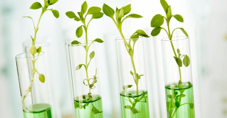 Indoor agriculture holds promise for supplements.
