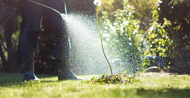 man-spraying-pesticide.png