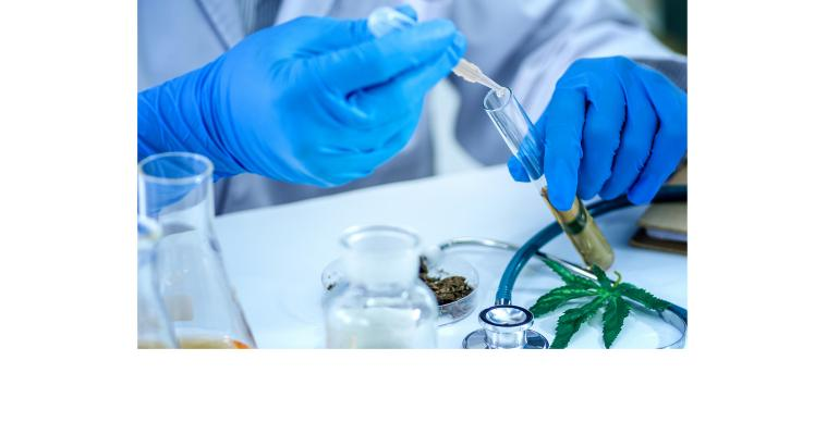 marijuana-research-Getty-promo.jpg
