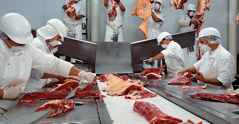 Meat processing plant, slaughterhouse, beef industry