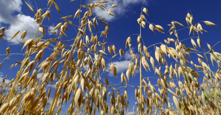 Public comment open for EPA to ban glyphosate on oats