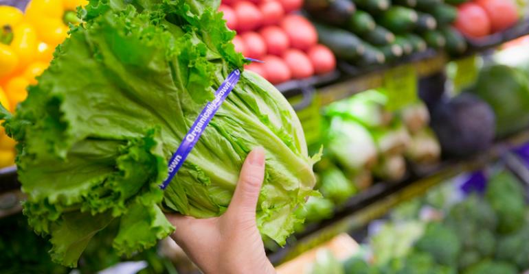 organic plant-based diet