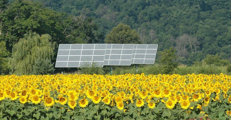 organic valley solar