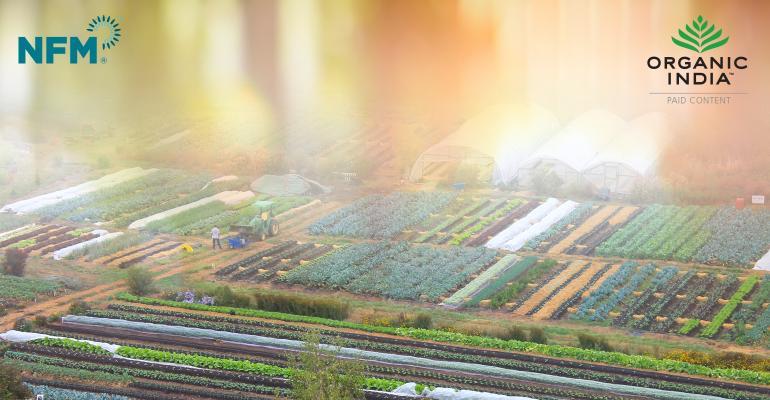 organicindia-article-promo