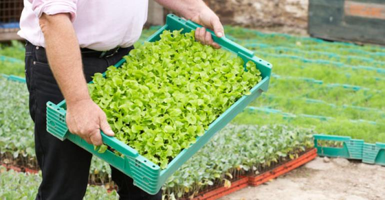 Organic farming stats you should know