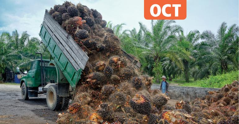 Oil palm plantation truck