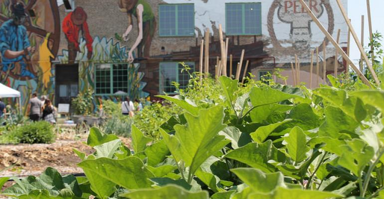Plant Chicago