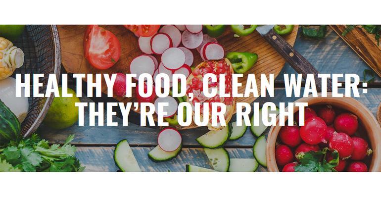 consumers food politics