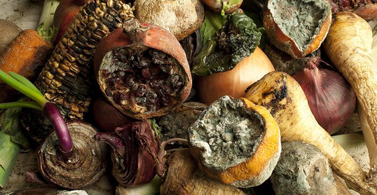 rotten-produce.jpg