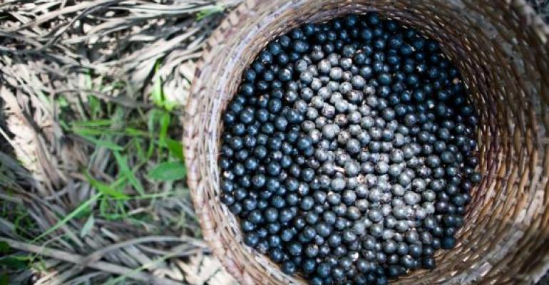 Açaí research brings good news to superfruit market