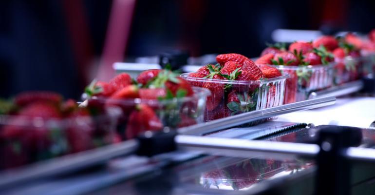 strawberry processing