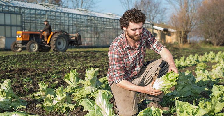 sustainable farmer policies