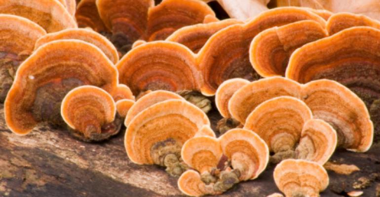 Uncapping mushrooms' beauty potential
