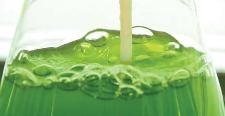 Sustainable algae ingredients fill wide application niches