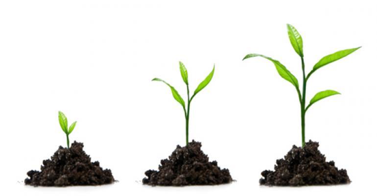 U.S. nutricosmetics market offers tremendous growth potential