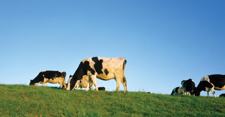 Fonterra finds a fountain of functionality in milk