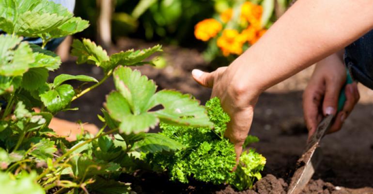 5@5: South Dakota legislators revisit CBD ban | The rise of edible landscaping