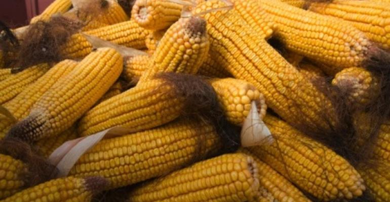 New GMO study energizes Prop 37 debate