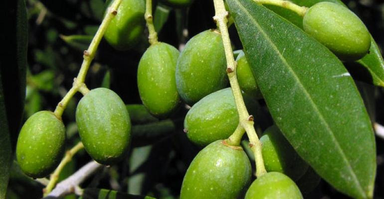 Natac adopts olive through ABC's Adopt-an-Herb Program