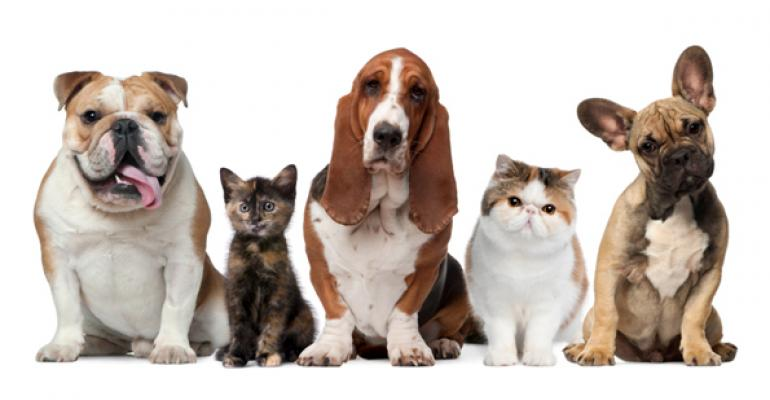 Pet Industry Sustainability Coalition unleashes tools, accreditation