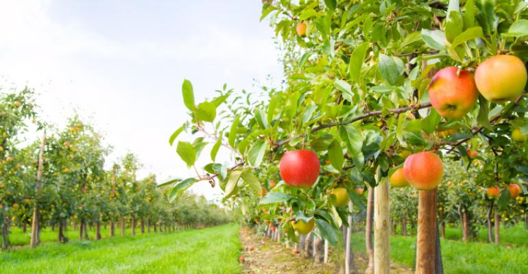 When organic consumers win, must producers always lose?
