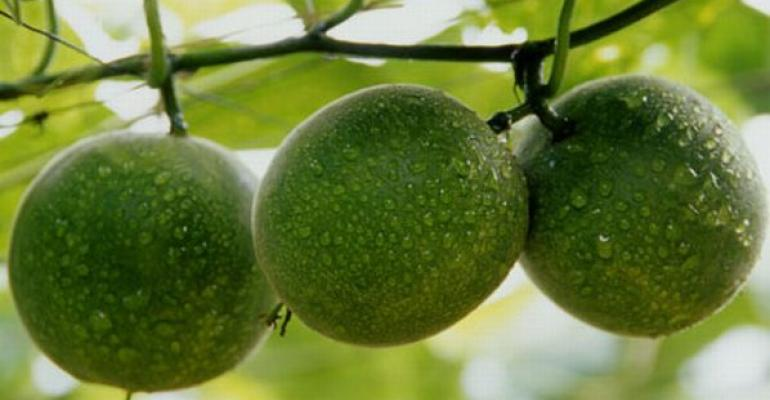 LAYN shows monk fruit sweeteners at SupplySide