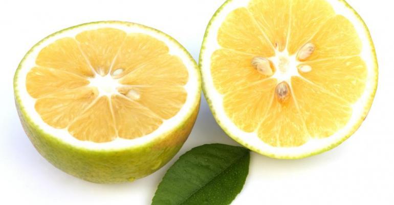 Principium introduces SelectSIEVE Bergamot