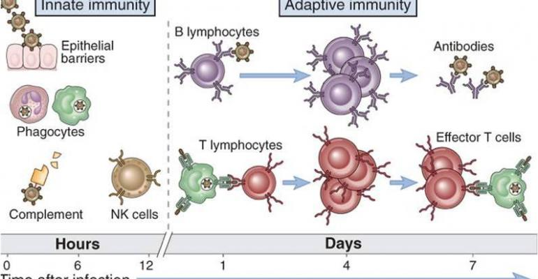 Approaches to immune health