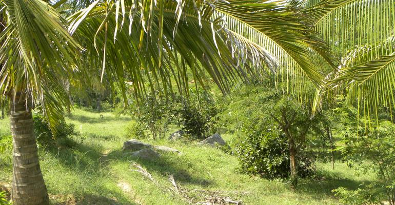 Orgentics39 400acre organic farm in India